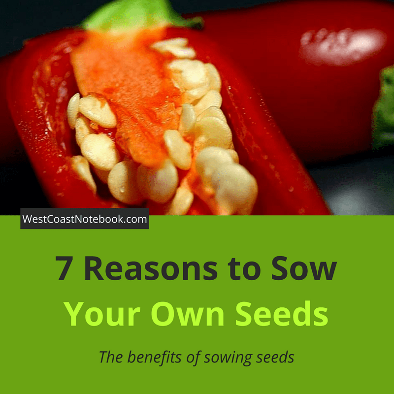 7 Reasons to Sow Your Own Seeds