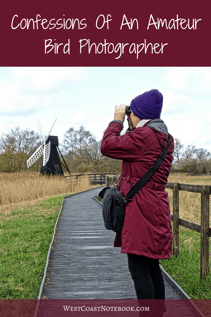 Confessions Of An Amateur Bird Photographer