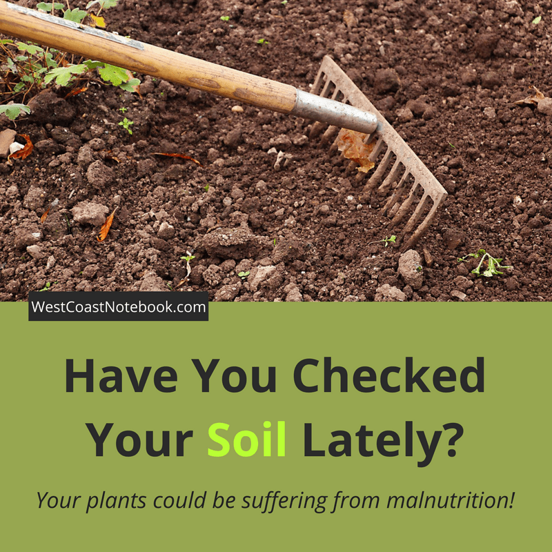 Have You Checked Your Soil Lately?