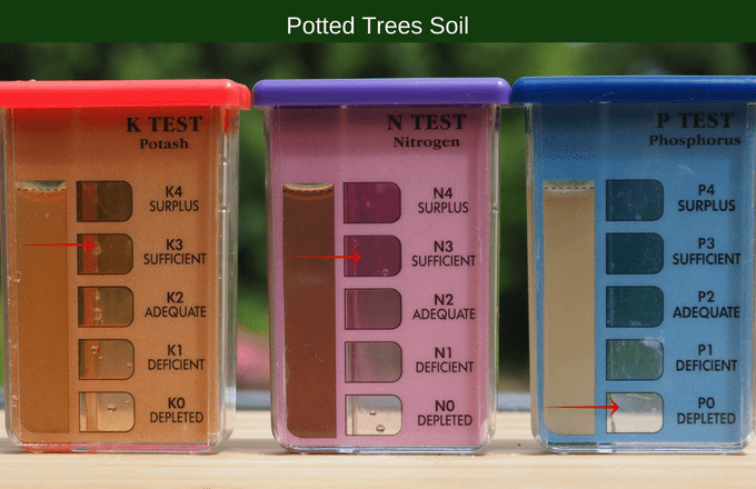 Potted trees soil results