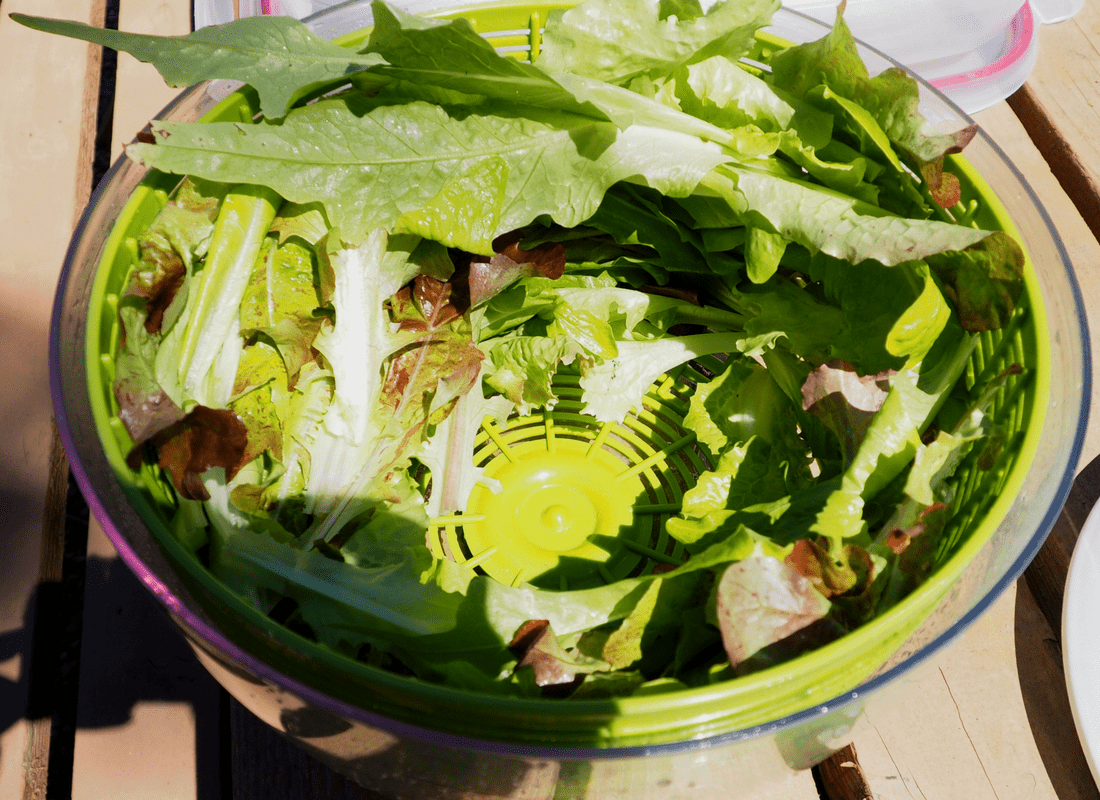 spin lettuce in a salad spinner