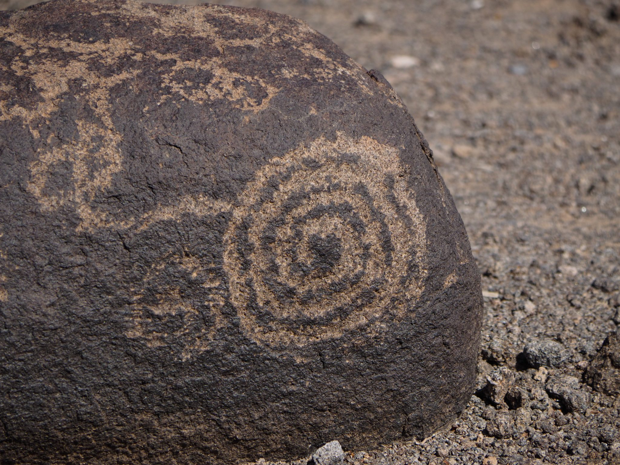 Painted Rocks Petroglyph