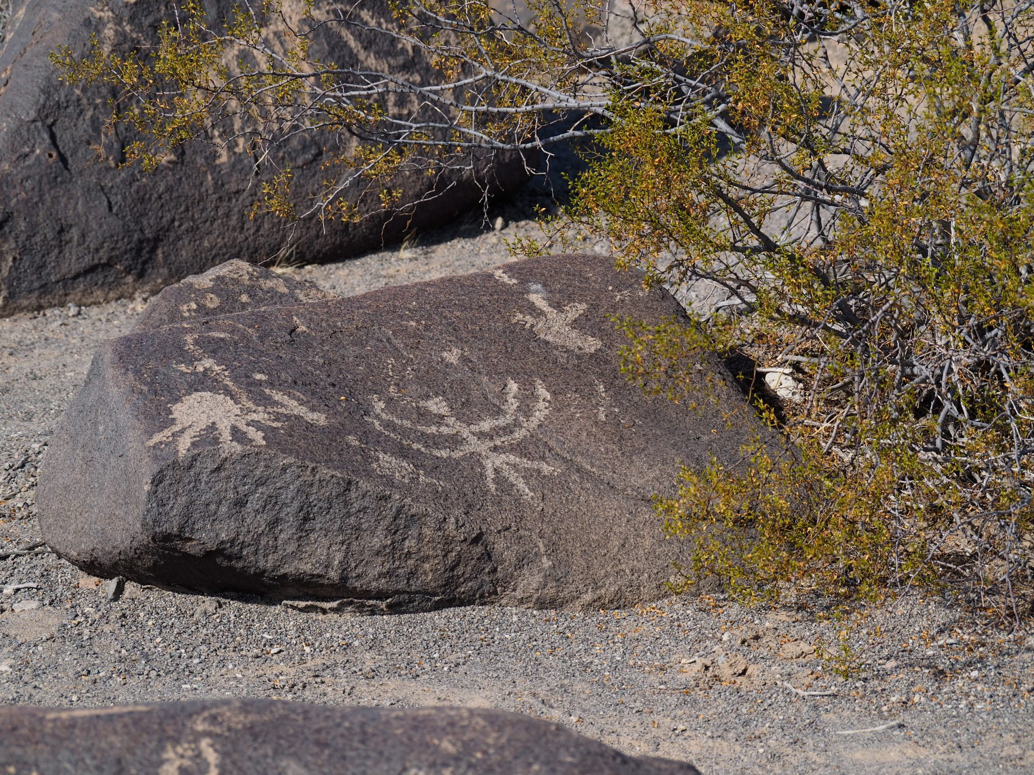 Painted Rocks Petroglyphs