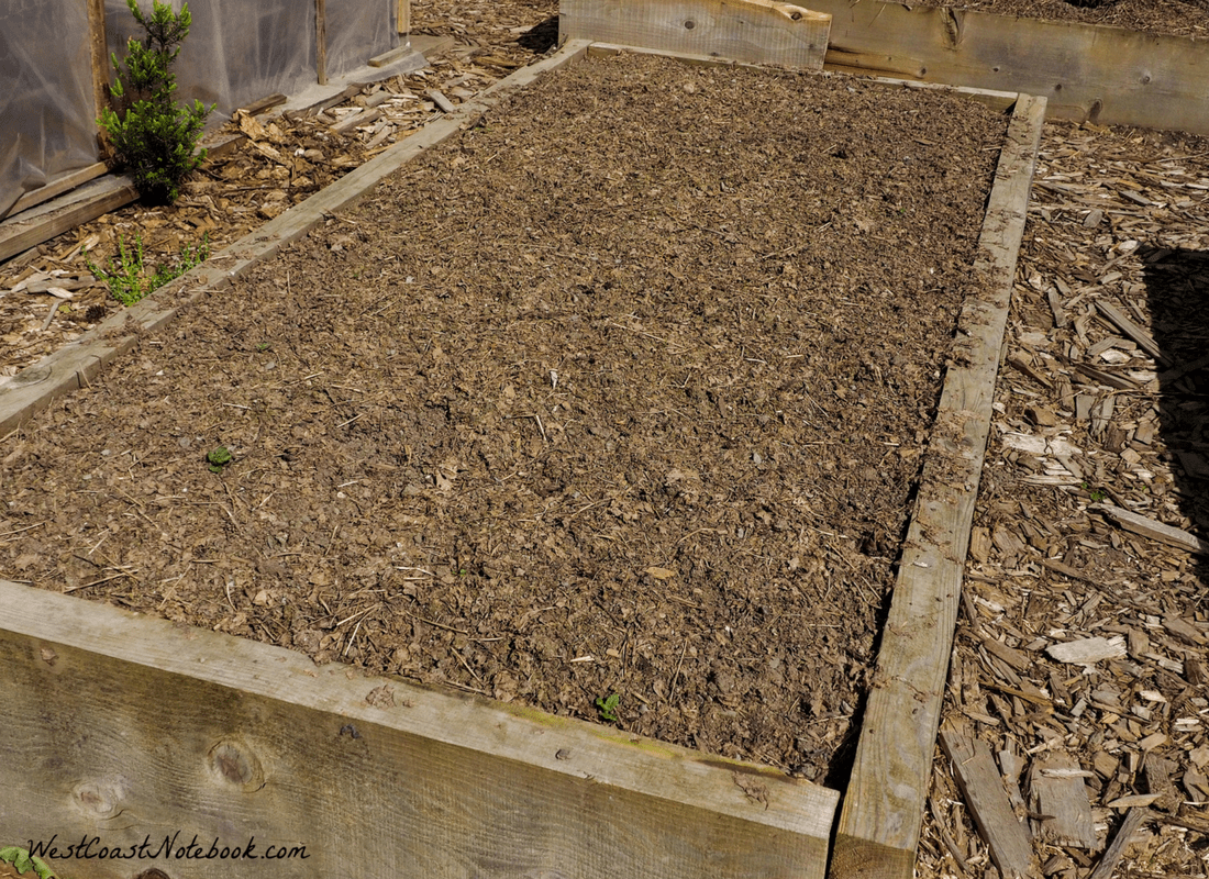 chicken manure and shredded leaves on raised garden beds