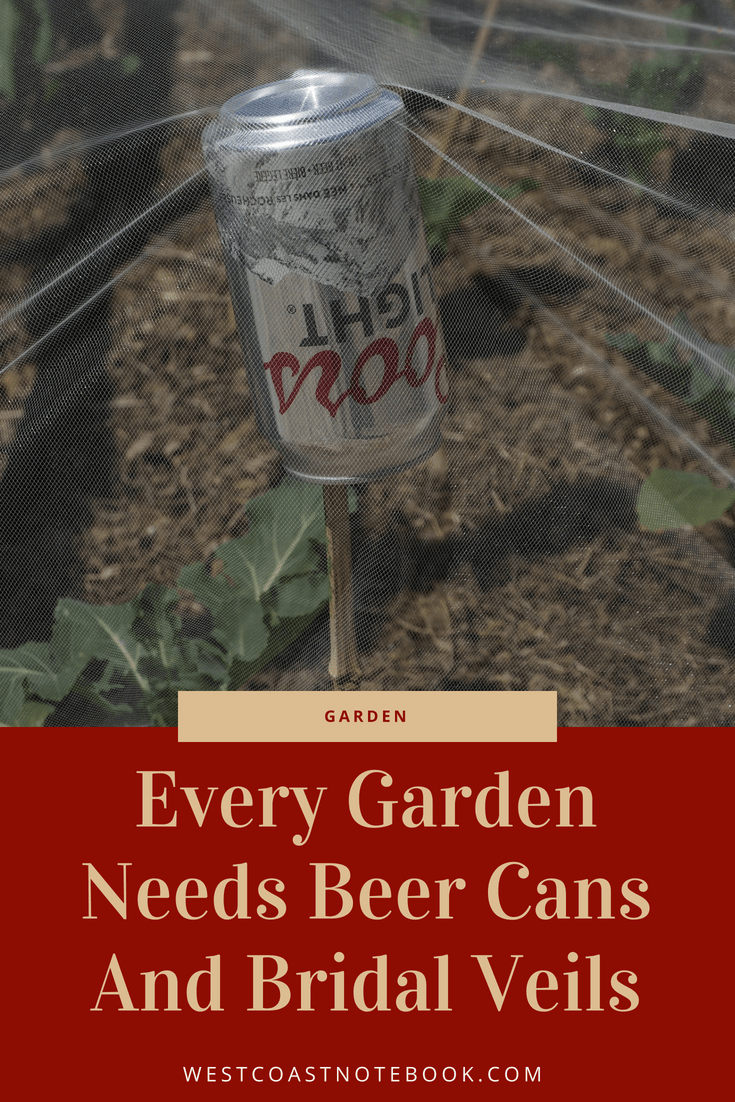 Every Garden Needs Beer Can And Bridal Veils