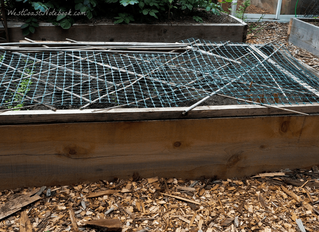 cover garden with net and sticks