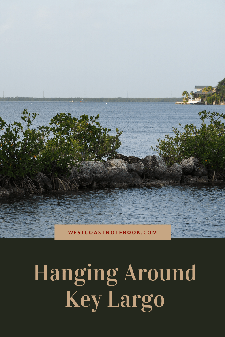 Hanging Around Key Largo