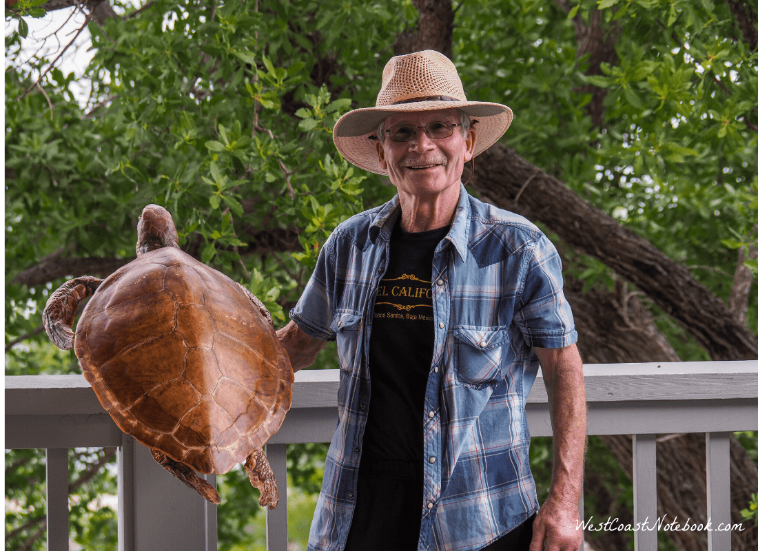 Rob holding a green turtle